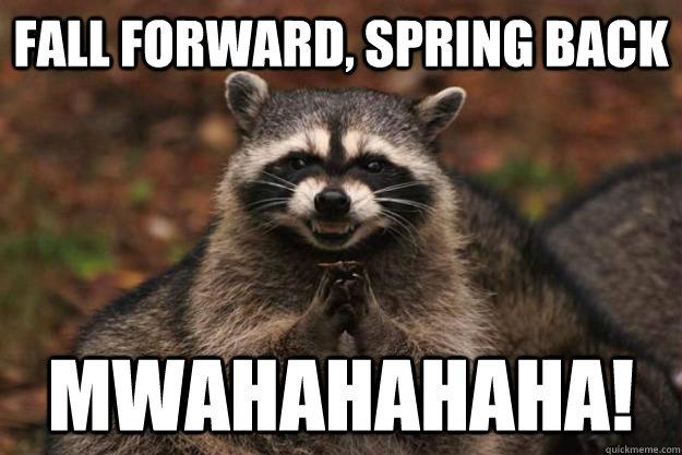 Spring Forward Fall Back Cat